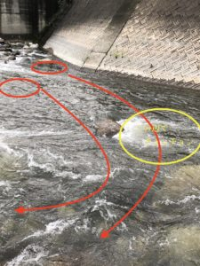 渓流ルアーの始め方 具体的な釣り方解説