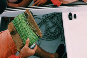 【外房】ヒラマサ釣りで失敗しないPEラインの選び方
